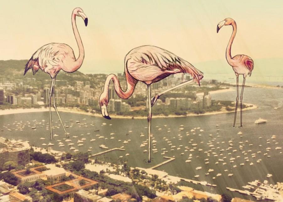 flamingos-1024x730